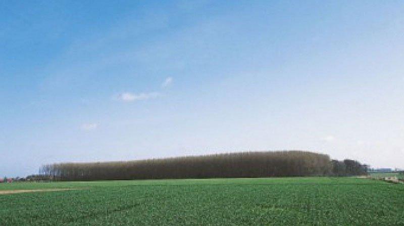 Autour de la Libaude (Marquillies)