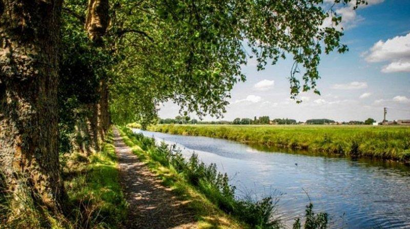 Au canal de Seclin, le canard prend son bain